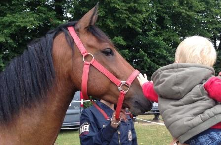 Scout at Shelford Feast 2015